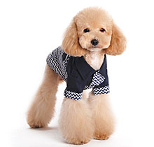 dogo boy dog clothes
